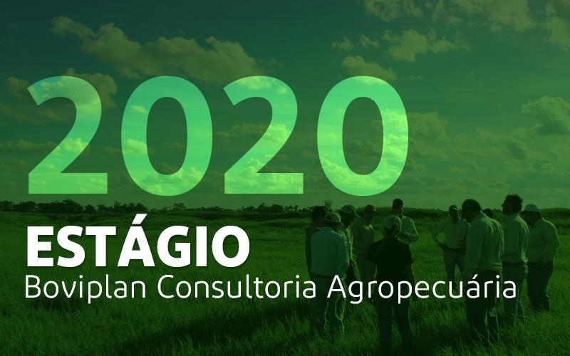 Inscrições abertas para estágio na Boviplan em 2020