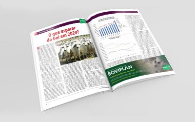 Revista AG: O que esperar do boi em 2020?