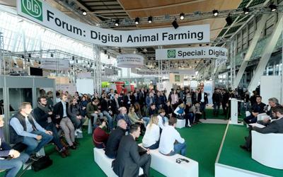 """""""Nem as questões ambientais nem de bem-estar animal podem ser resolvidas exportando-as""""."""